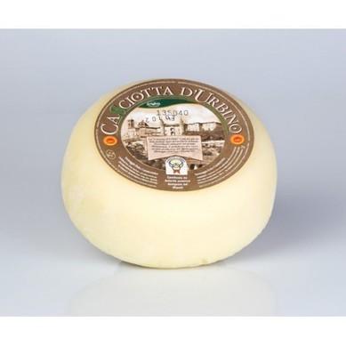 Casciotta of Urbino | Le Marche and Food | Scoop.it