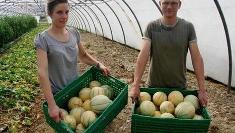 Pesticides : après «Cash Investigation», des agriculteurs dénoncent   Home   Scoop.it
