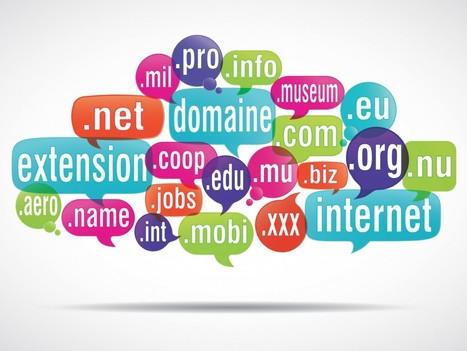 Asdoria Web Agency - 4 conseils pour bien choisir votre nom de domaine   Stratégies SEO, référencement naturel pour les PME   Scoop.it