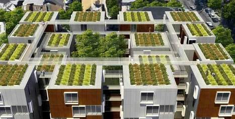 France Declares All New Rooftops Must Be Topped With Plants Or Solar Panels | CSGlobe | Mrs. Watson's Class | Scoop.it
