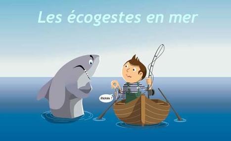 Publication : les écogestes de la mer - Ministère du Développement durable | La préservation de l'environnement marin | Scoop.it