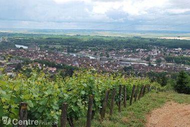 Joigny : balade dans les vignes de la cité maillotine - L'Yonne Républicaine | Le vin quotidien | Scoop.it