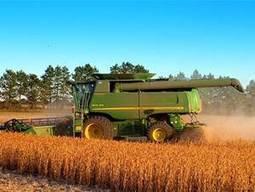 Monsanto: mucho peor que Glifosato   MONSANTO   Scoop.it