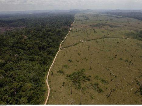 Les grandes multinationales inconscientes des risques qui pèsent sur leurs approvisionnements | Agroalimentaire des Pays du Sud | Scoop.it
