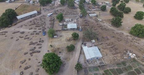 Un drone filme le pillage pour la Chine des dernières forêts du Sénégal | Sociétés & Environnements | Scoop.it