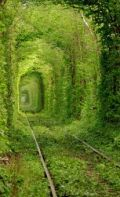 10 Most Fascinating Tunnels | Strange days indeed... | Scoop.it
