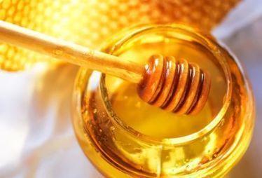 Le miel, nectar antiseptique | Les bons conseils de la CNM | Scoop.it