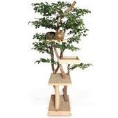 The Feline Tree House - $950 | PERSIAN CATS | Scoop.it