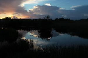 Everglades Restoration Project Gets GreenLight - CBS Miami | The Everglades Puzzle | Scoop.it