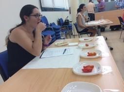 El campus de Elche acoge una cata de variedades tradicionales de tomate de la EPSO | Mejora genetica | Scoop.it