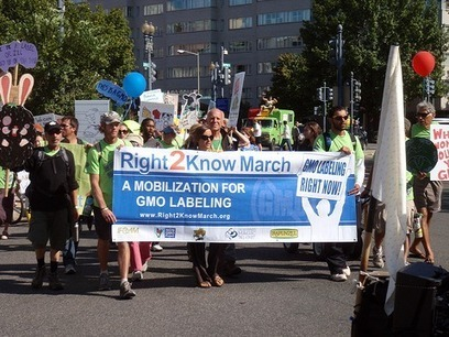 GMO and 'natural' food - let the fight begin | GMO GM Articles Research Links | Scoop.it