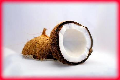 Coconut Oil   Holistic & Alternative Health   Scoop.it