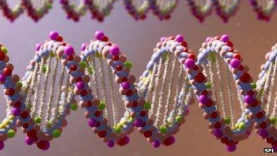 Massive DNA volunteer hunt begins | Innovation Cultures | Scoop.it