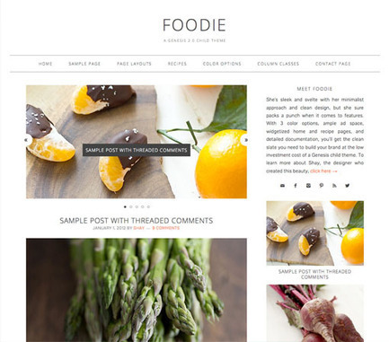 Top 15 Best WordPress Food Themes   WordPress   Scoop.it