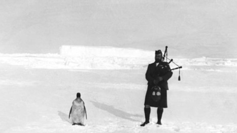 Strange Historic Photos From Antarctica and Other Kingdoms of Ice | Strange days indeed... | Scoop.it