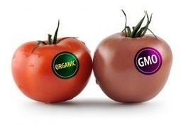7 Reasons Why Genetically Modified Foods Will Never Be Labeled And Why It Won't Matter In The Future | Healthy Food Tips & Tricks | Scoop.it