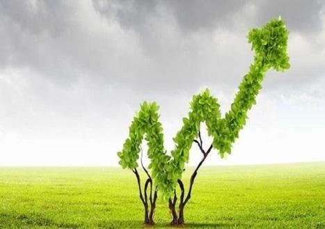 Crescita Green, il ruolo delle politiche fiscali | Energia, Ambiente e Green Economy | Scoop.it