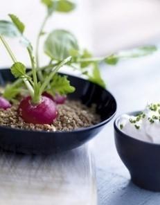 Les radis vivants : recette de cuisine proposée par ELLE à Table - Recettes Elle à Table | Dante's Scoop | Scoop.it