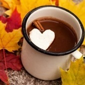 Cocoa for Cardiovascular Health | Food, Nutrition and Health | Scoop.it
