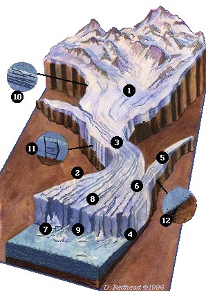 (EN) - Glacier anatomy | Alaska Satellite Facility | Glossarissimo! | Scoop.it