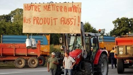 Le TAFTA et ses conséquences sur les agriculteurs | Questions de développement ... | Scoop.it
