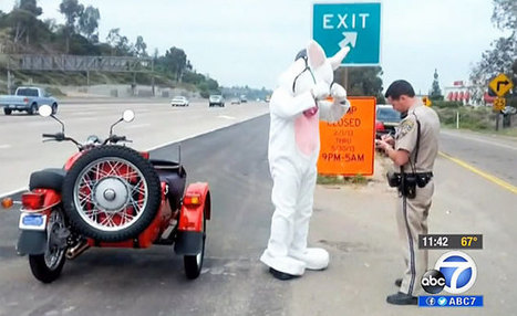 Weekend Awesome - Ural-Riding Easter Bunny Pulled Over by Cops | Motorcycle Riding | Scoop.it
