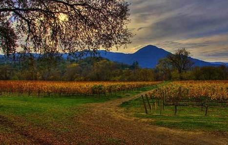 Russian River Wine Tasting Tours | Airport Transportation Services California | Scoop.it
