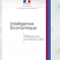 Intelligence Economique : Un ouvrage gratuit pour comprendre - Le Monde Informatique | Veille informationnelle, curation,intelligence économique | Scoop.it