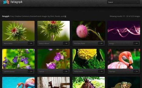 Fotogrph, colección de bellas fotografías Creative Commons para ... | Bilingual News for Students | Scoop.it
