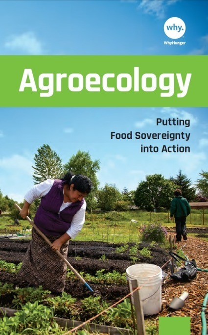 WhyHunger Launches New Agroecology | Questions de développement ... | Scoop.it