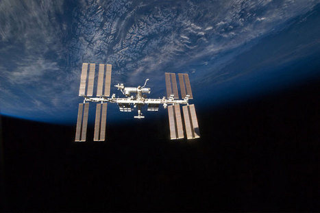Is there really plankton clinging to the outside of the space station? | Science, Space, and news from 'out there' | Scoop.it