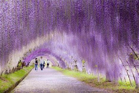 22 Ravishingly Beautiful Places That are Hard To Believe Truly Exist | enjoy yourself | Scoop.it
