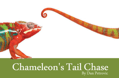 Chameleon's Tail Chase | Real SEO | Scoop.it