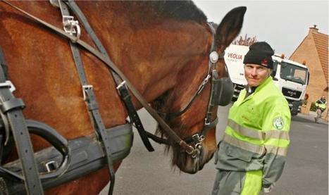 Le cheval fait son grand retour en centre-ville | Urbanisme | Scoop.it