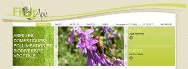 FlorApis : Abeilles domestiques, pollinisation et biodiversité végétale   Le monde des abeilles   Scoop.it