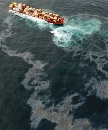 Rena oil spill effects and response – reports released - Science Media Centre (blog) | Oil Spill | Scoop.it