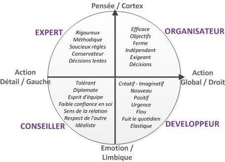 Tête au carré : nos préférences cérébrales | Kolibri coaching - Coaching du management et des dirigeants | Elément Humain | Scoop.it