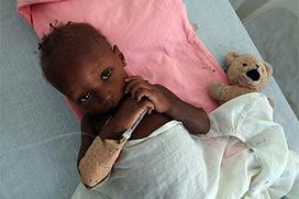 Cólera en Haití: de un solo caso a más 600.000 infectados y 8.000 muertos   microBIO   Scoop.it