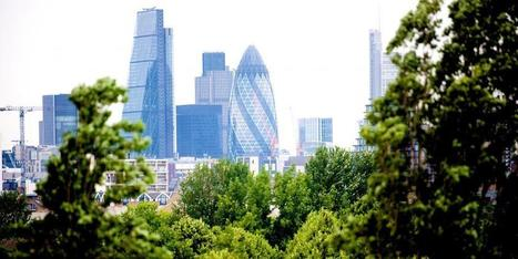 Green Infrastructure Task Force report | Publications | London City Hall | Greenroofs & Urban biodiversity | Scoop.it