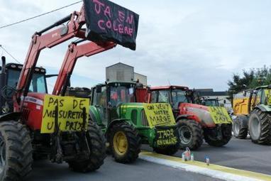 Les éleveurs bloquent le producteur de Maroilles Fauquet dans l'Aisne   The Voice of Cheese   Scoop.it