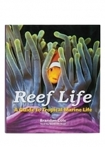 The Ultimate Marine Life Field Guide | All about water, the oceans, environmental issues | Scoop.it
