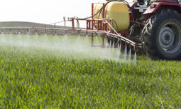 'Extreme Levels' of Monsanto's Roundup Herbicide Found in Soy Plants | EcoWatch | Scoop.it