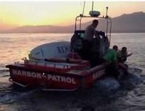 Video - Etats-Unis : un cheval retrouvé dans l'Océan Pacifique à trois kilomètres des côtes | Cheval | Scoop.it