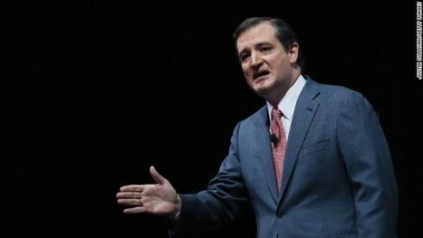 Cruz to add voter ID amendment to immigration bill | AP Gov | Scoop.it