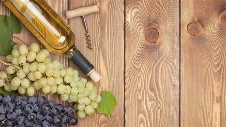 Bientôt un vignoble en plein cœur de Vancouver | Vinideal - A la recherche de votre Vin Idéal ! www.vinideal.com | Scoop.it