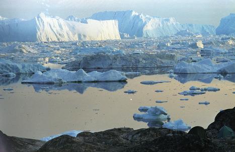 Explosion de nouvelles espèces en eau salée | Nature & Civilization | Scoop.it