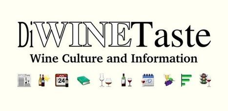 DiWineTaste lancia la app per Android che fa cultura del vino ... | Vino al Vino | Scoop.it