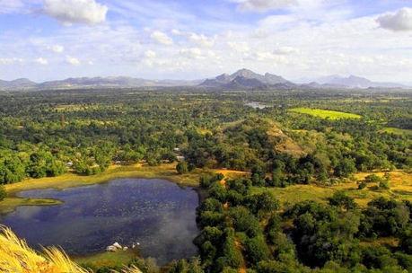 La savane de Sigiriya, Sri Lanka | Actu & Voyage au Sri Lanka | Scoop.it
