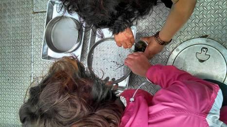 Great Lakes Educators Workshop: Teaching Teachers about Marine Debris   Marine Litter   Scoop.it