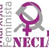 feminismo20